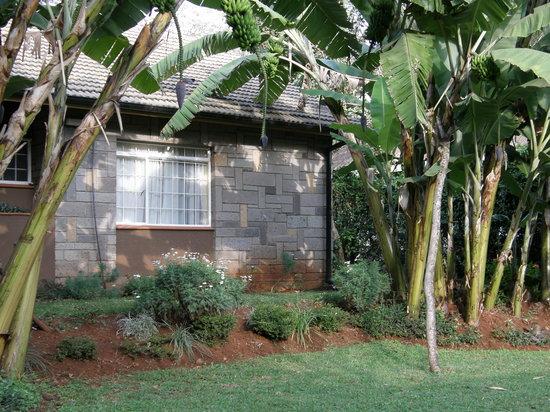 Sandavy Guest House - Kilimani: Sandavy Guest House Back Yard
