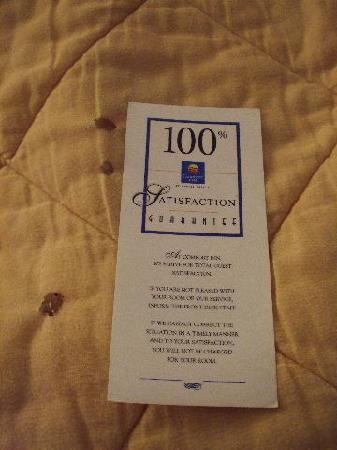 Quality Inn Johnson City: Several of Many Holes in Linens - Satisfaction Gauranteed - Bolognia