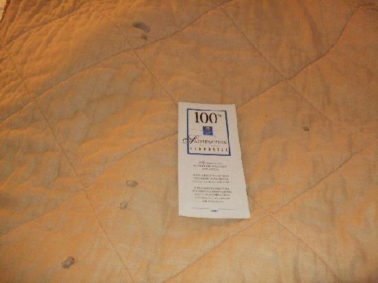 Quality Inn Johnson City: More Burn Holes