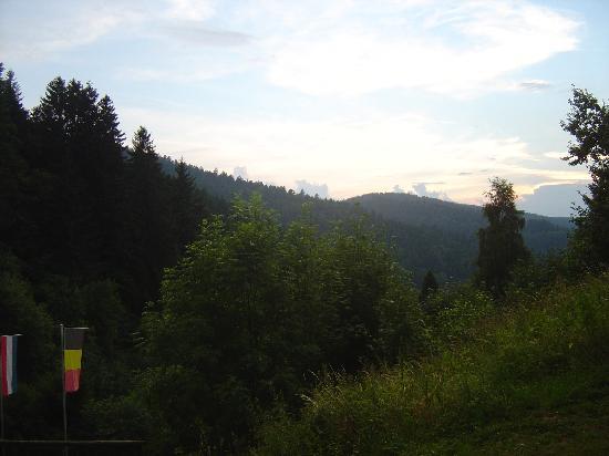 Berghotel Tannenhof-Schwarzwaldblick Triberg: View from room