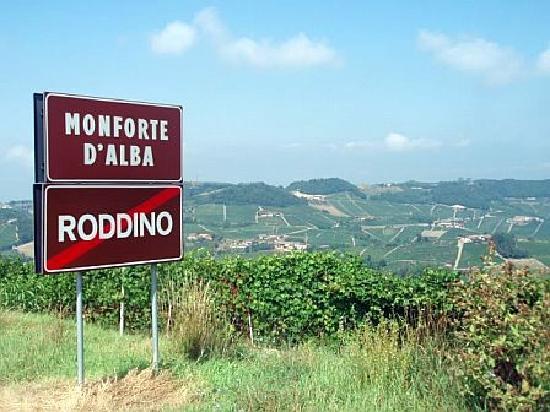 Le Case della Saracca: surrounding countryside