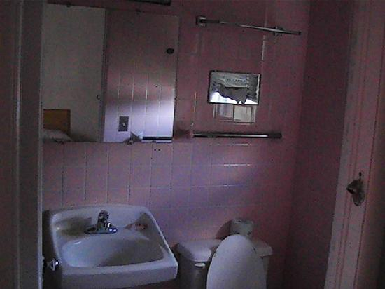 Red Carpet Inn Horseheads: bathroom dots on wall are dead flys
