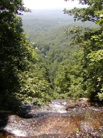 Len Foote Hike Inn: View from the top of Amicalola Falls