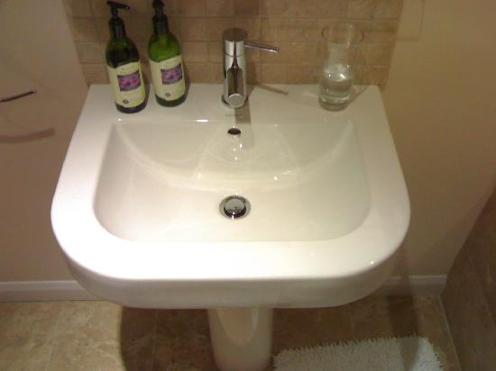 Higher Riscombe Luxury Bed and Breakfast: Superb sink.