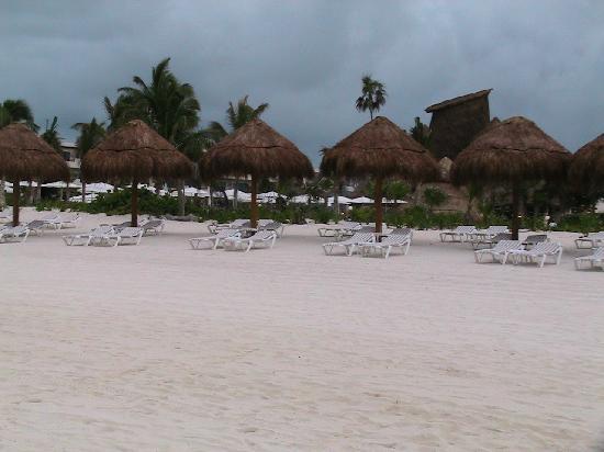 Secrets Maroma Beach Riviera Cancun: Beach looking toward resort