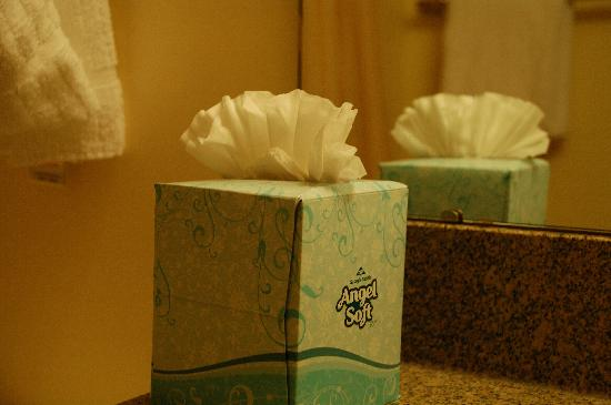TownePlace Suites Denver Tech Center: Ruffled tissue box