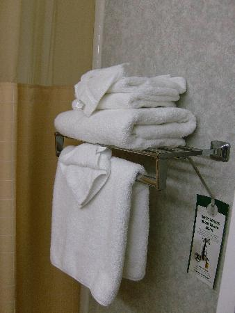 Holiday Inn Burbank: Two racks have more fluffy towels than you can use in a week.