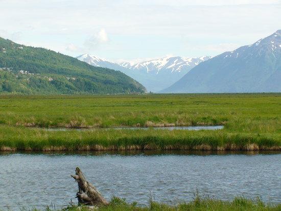 Анкоридж, Аляска: Anchorage- Potter March