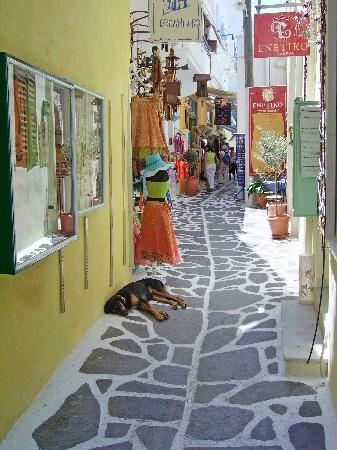 Sagterra Studios : street in old town, Chora