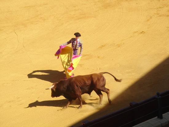 Torremolinos, Espanha: first bull