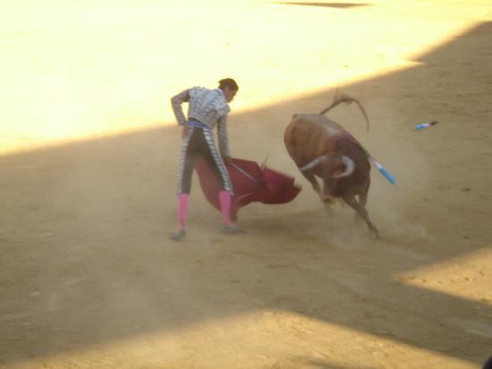 Plaza de Toros de Torremolinos: corrida