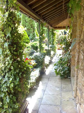 Greenhills Country House Hotel: Outside My Garden Room #2