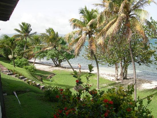 Coral Cove Cottages & Apartments : View of space between cottages and beach