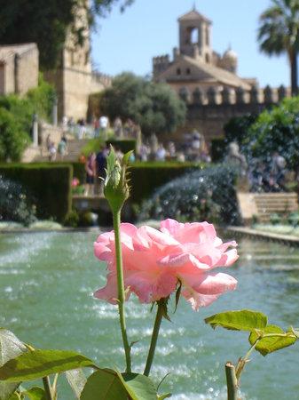 Istana Reyes Cristianos