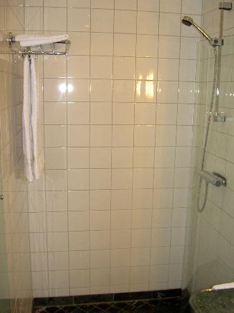 Elite Hotel Knaust: Deluxe room - Shower