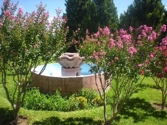 Sheraton Chihuahua Soberano : nice little fountain