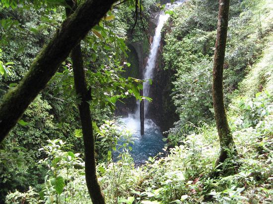 La Anita Rainforest Ranch: Cascade