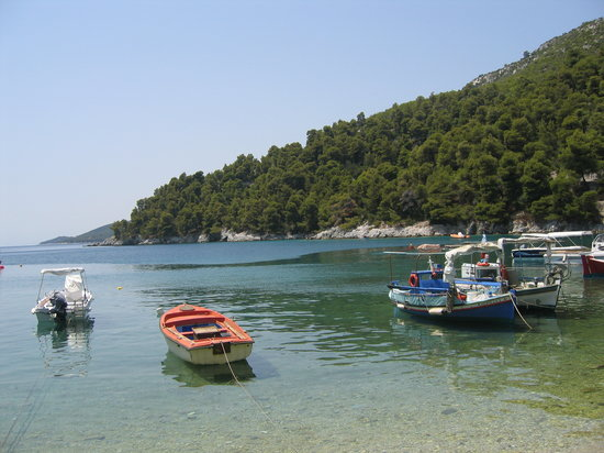 Skopelos, Grecia: Fishing boats