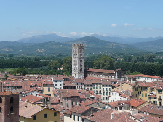 Lucca, Italia: The view from the top of the tower