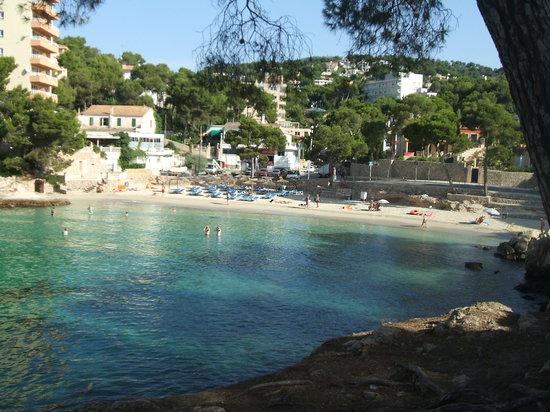 Hotel RD Mar de Portals : vista della spiaggia dell'hotel