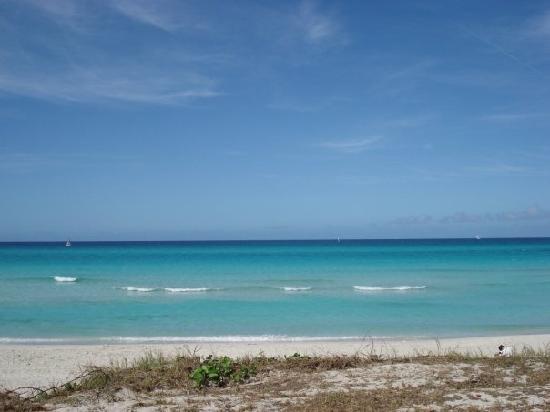 Hotel Club Tropical: The beach,