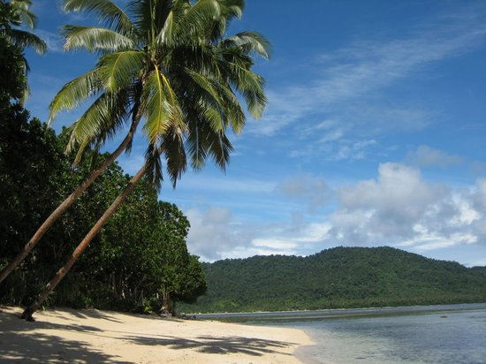 Qamea Island, Fiji: The view outside our bure