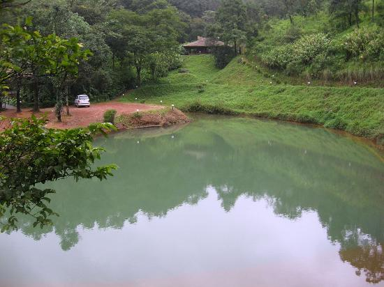 Rain Country Resorts, Lakkidi,Wayanad : Natural Pool