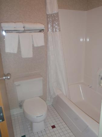 Ramada Spirit Lake/Okoboji: clean bathroom