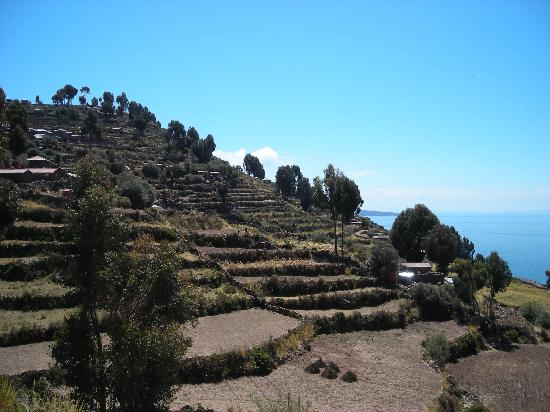 The terraces on Taquile Island