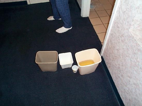 Days Inn Auburn/Finger Lakes Region: Fluid collected from leaky ceiling