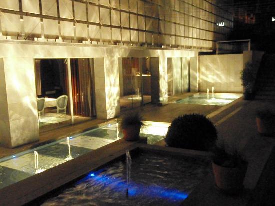 ฮอสเปสปาลาซิโอเดลอสปาตอส: garden in the night