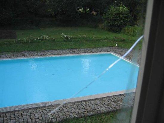 Le Manoir du Cleuziou: la piscine et ses feuilles vues de la chambre