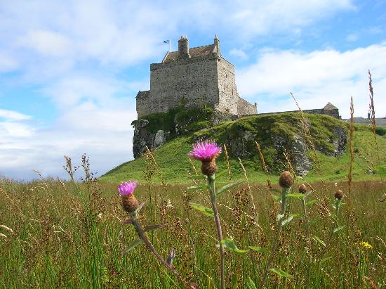 Linnehe View Bed and Breakfast: Duart Castle