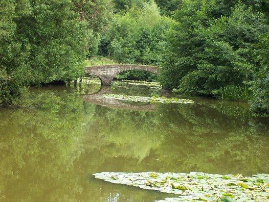 Staunton Park