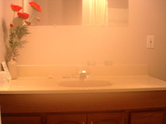 Bella Coola Mountain Lodge: Picture of their bathroom.