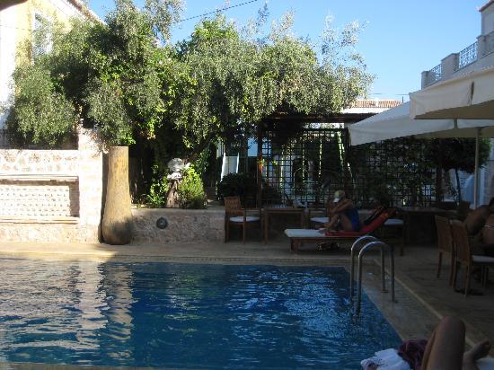 Thimaras Traditional Residences : pool area