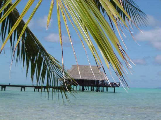 Tahaa, French Polynesia: il nostro nido d'amore