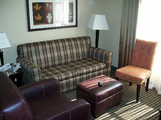 هوم وود سويتس باي هيلتون لويسفيل إيست: Another view of Living Room area