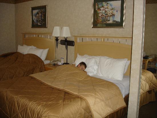Quality Inn Hayward Hotel: Des grands lits