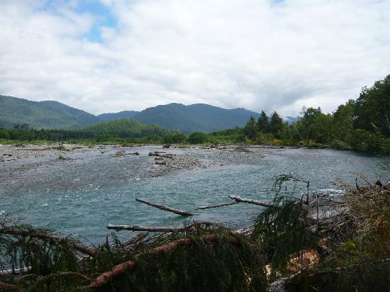 Rain Forest Resort Village: Quinault river just upstream from lake