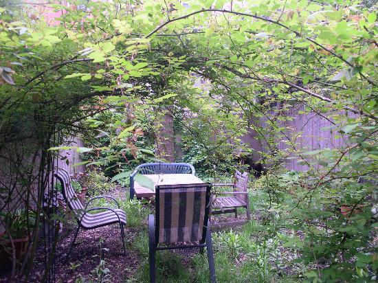 Efuru Guest House: the garden of the studio