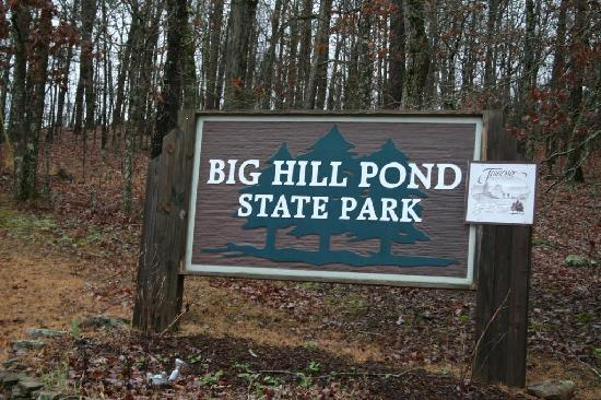 Pocahontas, TN: Big Hill Pond State Park--- the only sign...