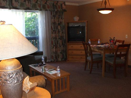 Forest Suites Resort at Heavenly Village: The linving room