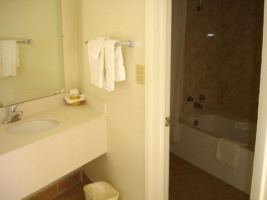BEST WESTERN East Zion Thunderbird Lodge: Salle de bains