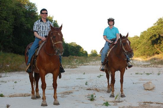 The Farmyard: My trail ride partner and I