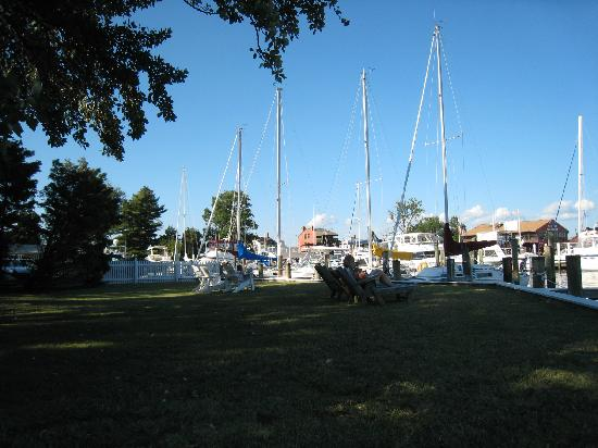 Two Swan Inn : Just some of the boats in the front yard