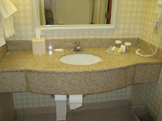 Hilton Garden Inn Jackson/Pearl: Bathroom Area
