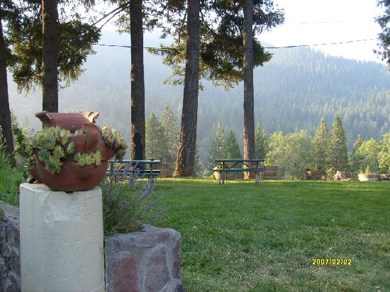 Dunsmuir Lodge: outside motel