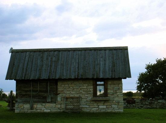 Abruka, เอสโตเนีย: Seaview house