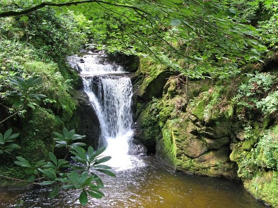 Baden-Wurttemberg, Jerman: Small waterfall in the Black forest